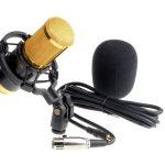 Qué micrófono comprar